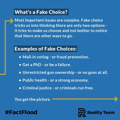 fake-choice-2